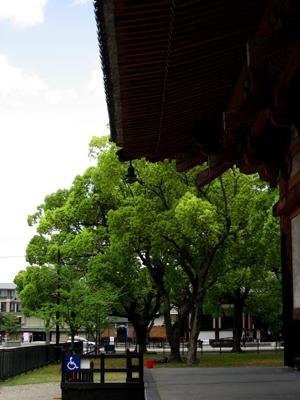 toji_02.jpg